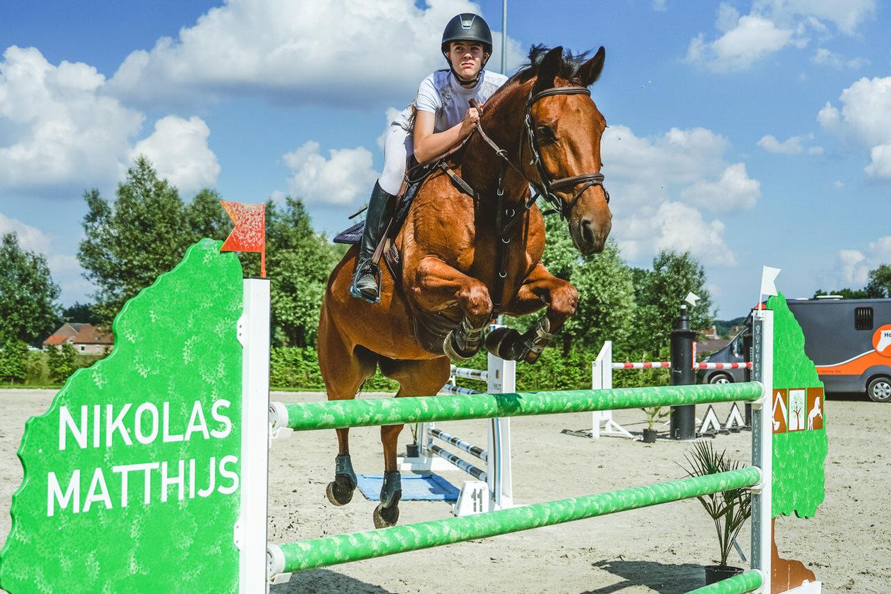 horse immo mivaro jumping nikolas matthijs