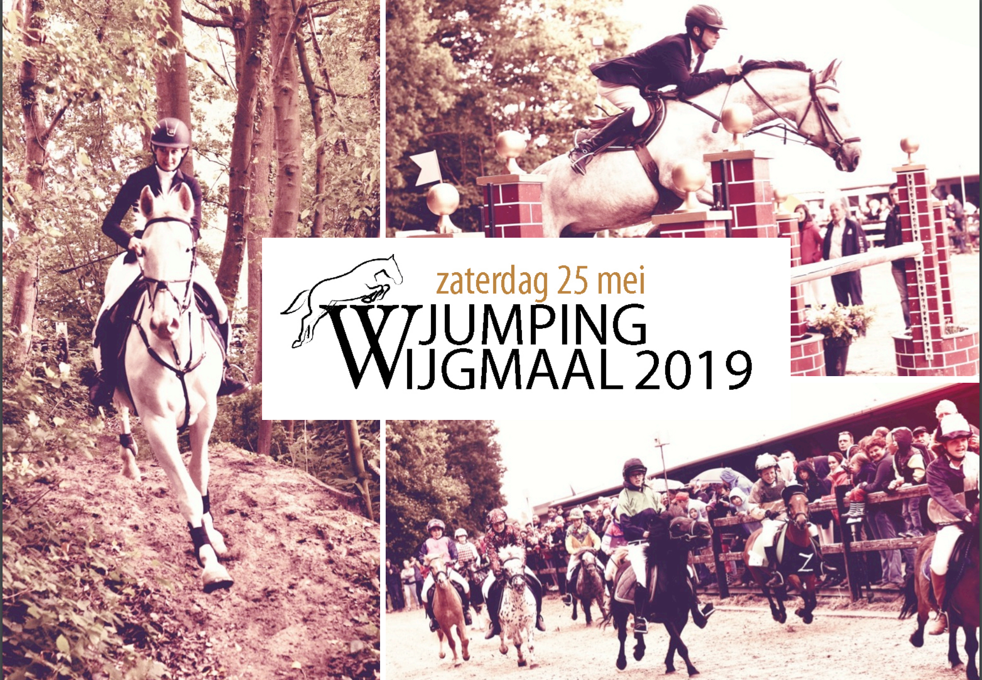 jumping wijgmaal 2019