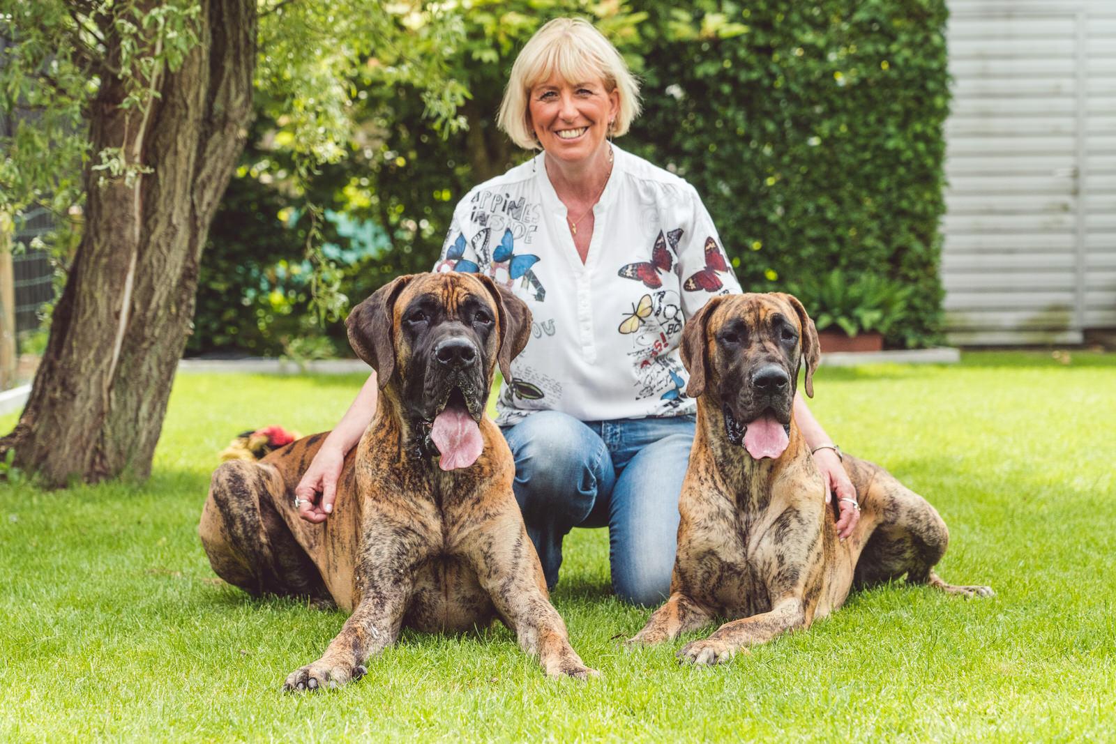 hondenportret twee