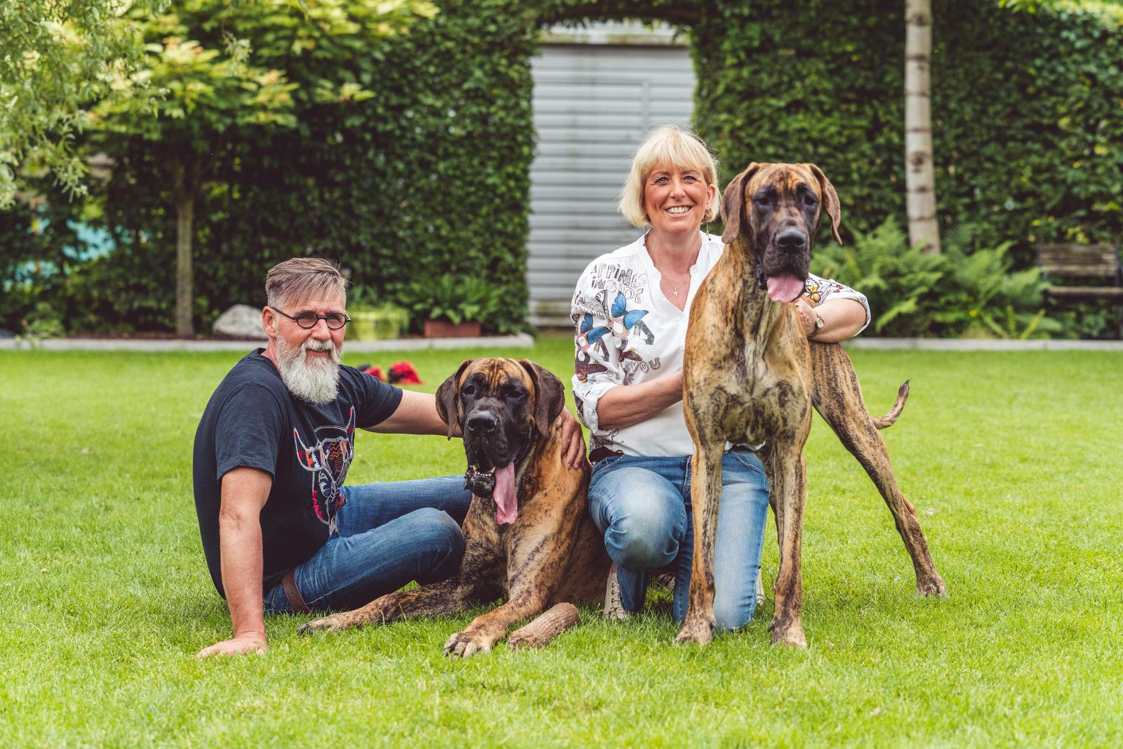 hondenportret gezin