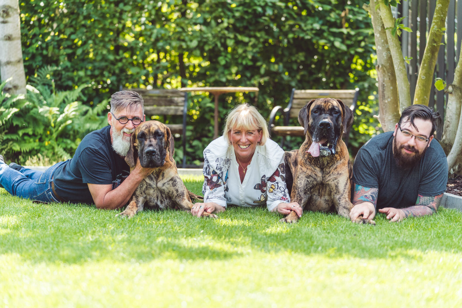 familieportret gras met honden