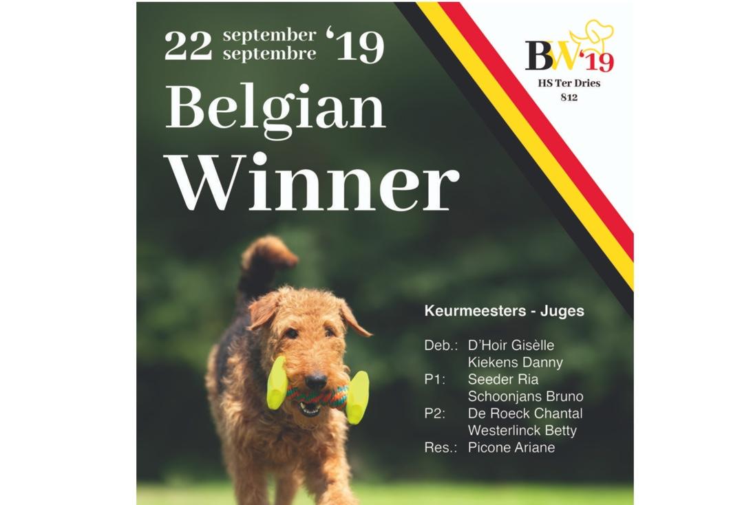 belgian winner gehoorzaamheid