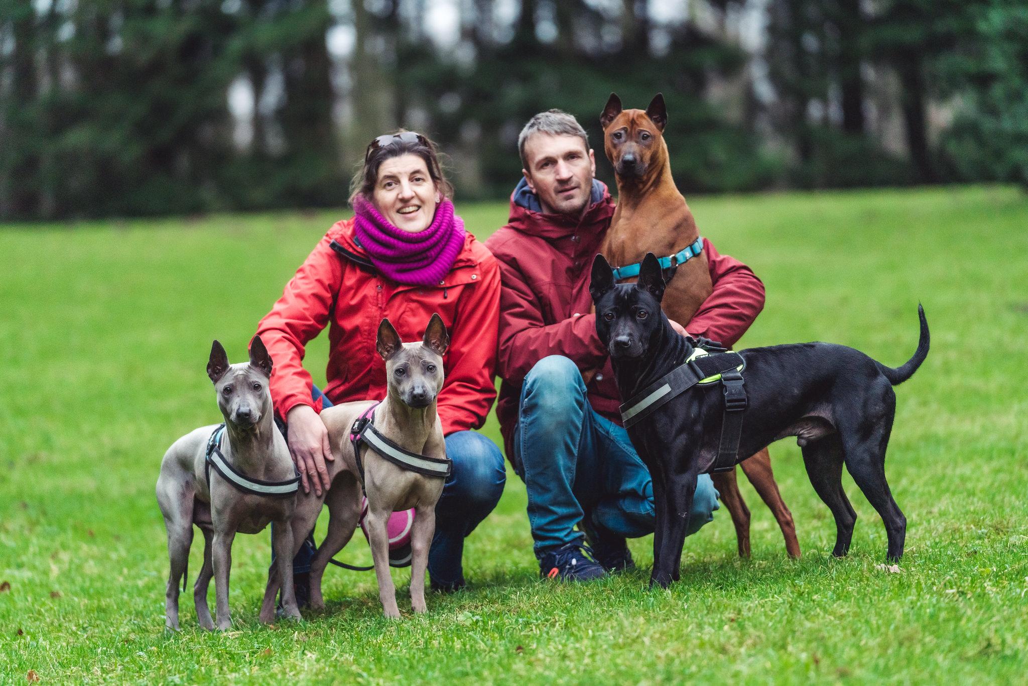 honden familie