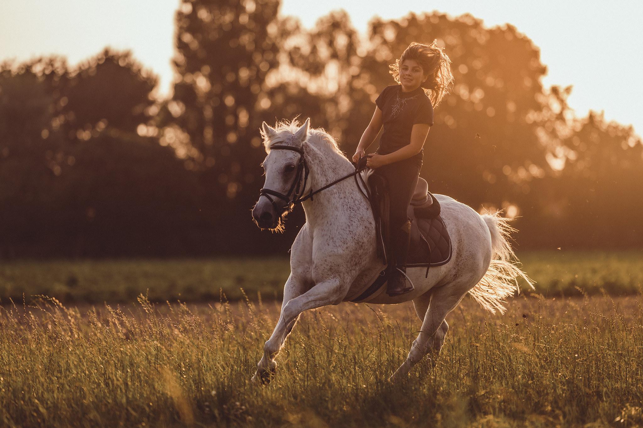 paardenfotoshoot avond zonsondergang